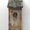 Vapauden kaipuu, 2008, yhdistelmätekniikka, 55x20cm